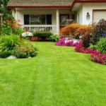 landscaping-lawn-care-campbell-ca